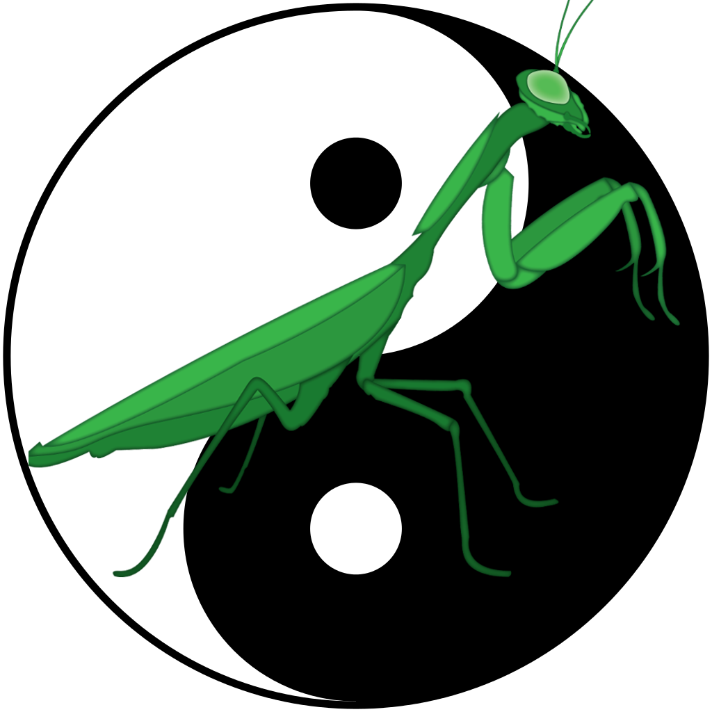Rules And Etiquette Ting Shen Kung Fu
